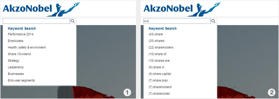 akzo_search-fayt-keywords