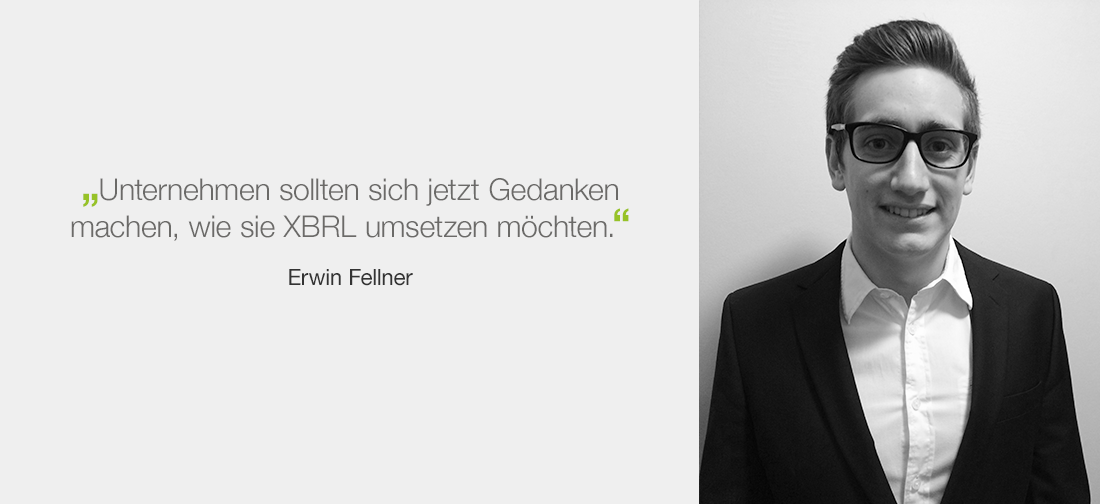 Erwin Fellner - XBRL in digitalen Berichten